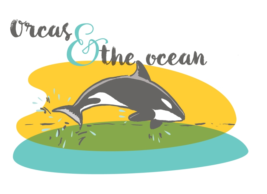 Orcas and the ocean